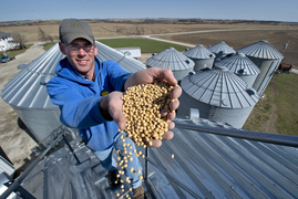 Soybeans become part of the trade fight