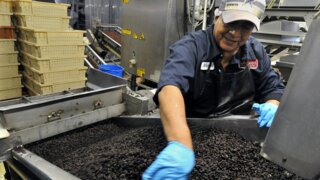 California growers produce 100% of raisins in the U.S., all within this one county