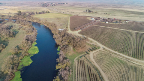 See drone video of the San Joaquin River Parkway's recent land acquisition