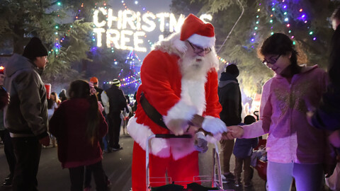 100 years of Christmas Tree Lane. Holiday light show opens this week. How it will be different