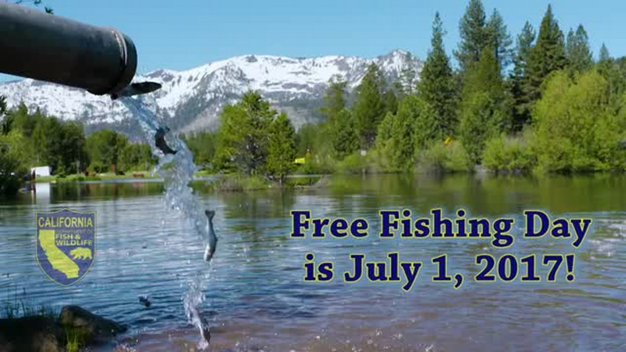 No license? No problem  Saturday, July 1, is a free fishing day in