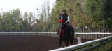 Fresno's enthusiasm over horse racing infuses trainer Jonathan Wong