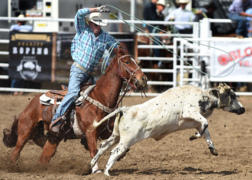 Clovis Rodeo opens next week. Here's what you need to know