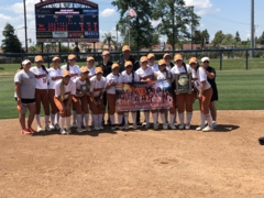 Selma High softball wins another Central Section title
