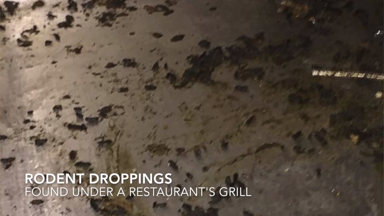 Fewer restaurants closed for violations so far in 2019 compared to '18. Here are the latest ones