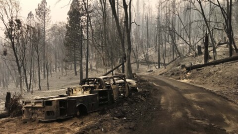 Creek Fire live updates: Wildfire reaches 20% containment, spreads to 246,756 acres