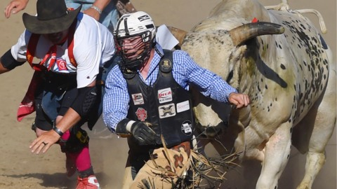 Clovis Rodeo's no-bull COVID stance is commendable. Now just ignore the ignorant herd