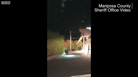 Want a break from the news? Watch a deputy help this skunk