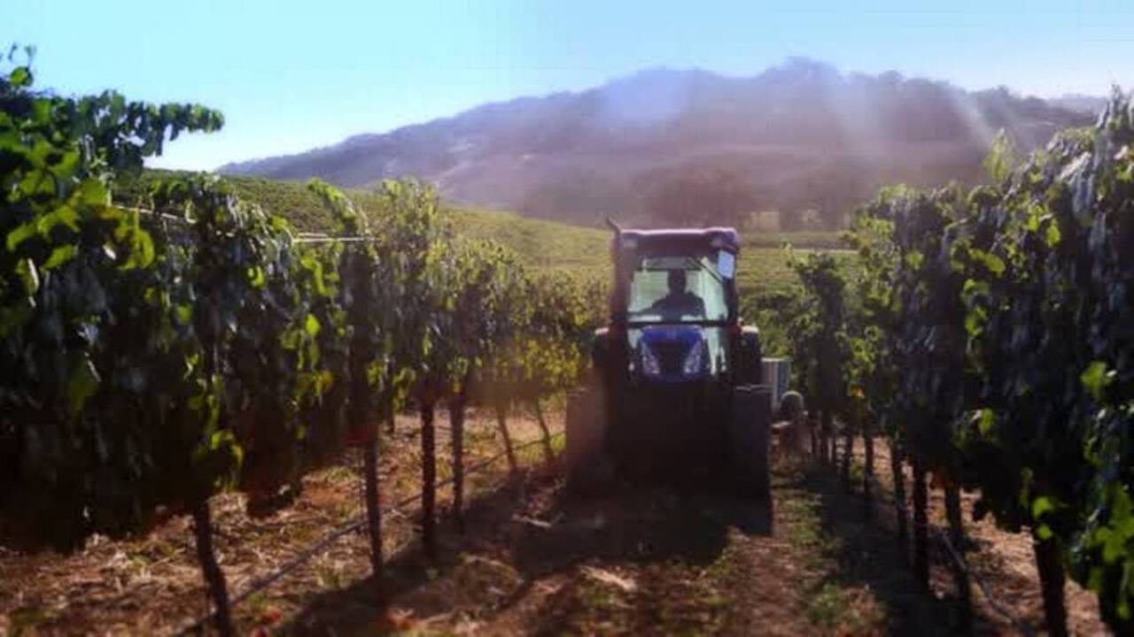 This Paso Robles winery just won Winery of the Year — for the second time