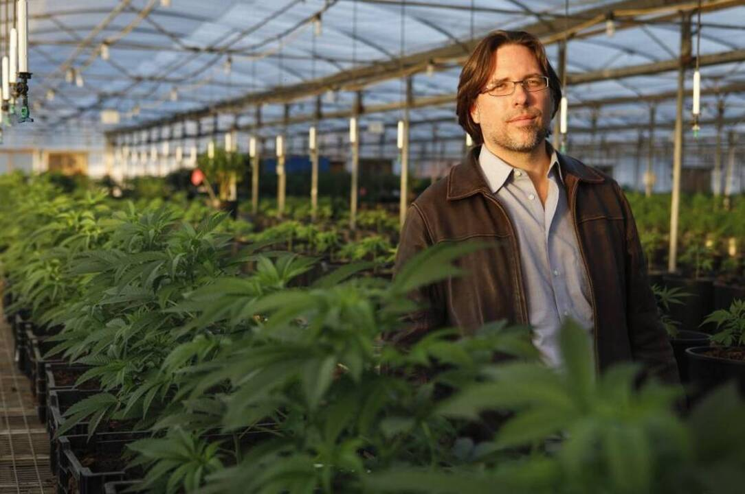 California and 37 states — even the red ones — want to let marijuana industry use banks