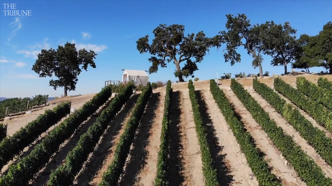 How did this Paso winery become region's fastest rising star? 'The wow factor'