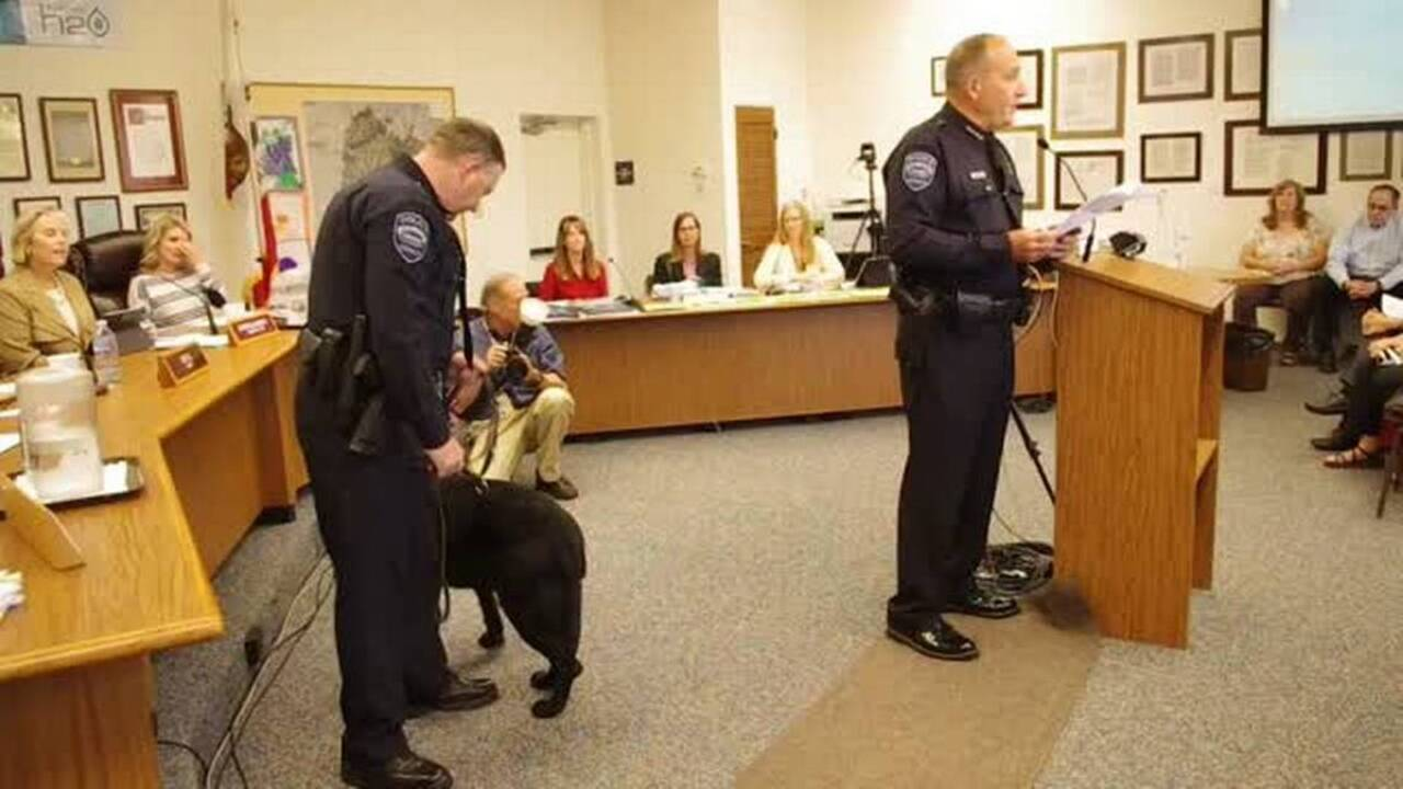 Arroyo Grande honors retiring police dog and officer | The Tribune