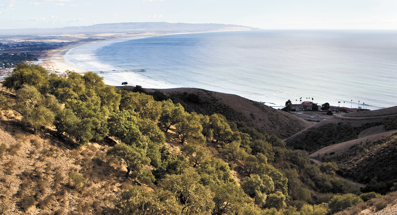 Pismo Preserve is finally opening 11 miles of trails to the public. Here's what you'll find