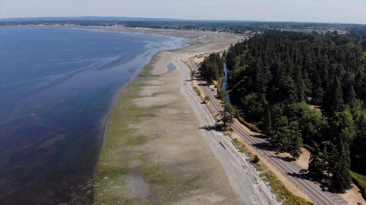 Relax, swim, hike or dig for clams at Birch Bay State Park. And that's not all.