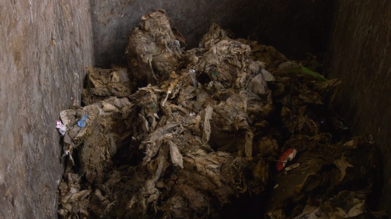 Massive clog of 'flushable' wipes removed from SC sewers by divers, officials say