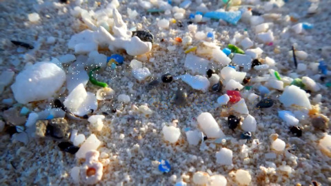 Plastic is the most prevalent type of marine debris found in the ocean
