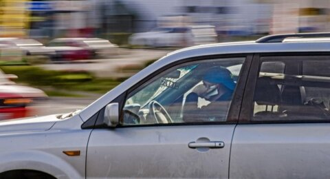 Does that pup on your lap violate the law against distracted driving?