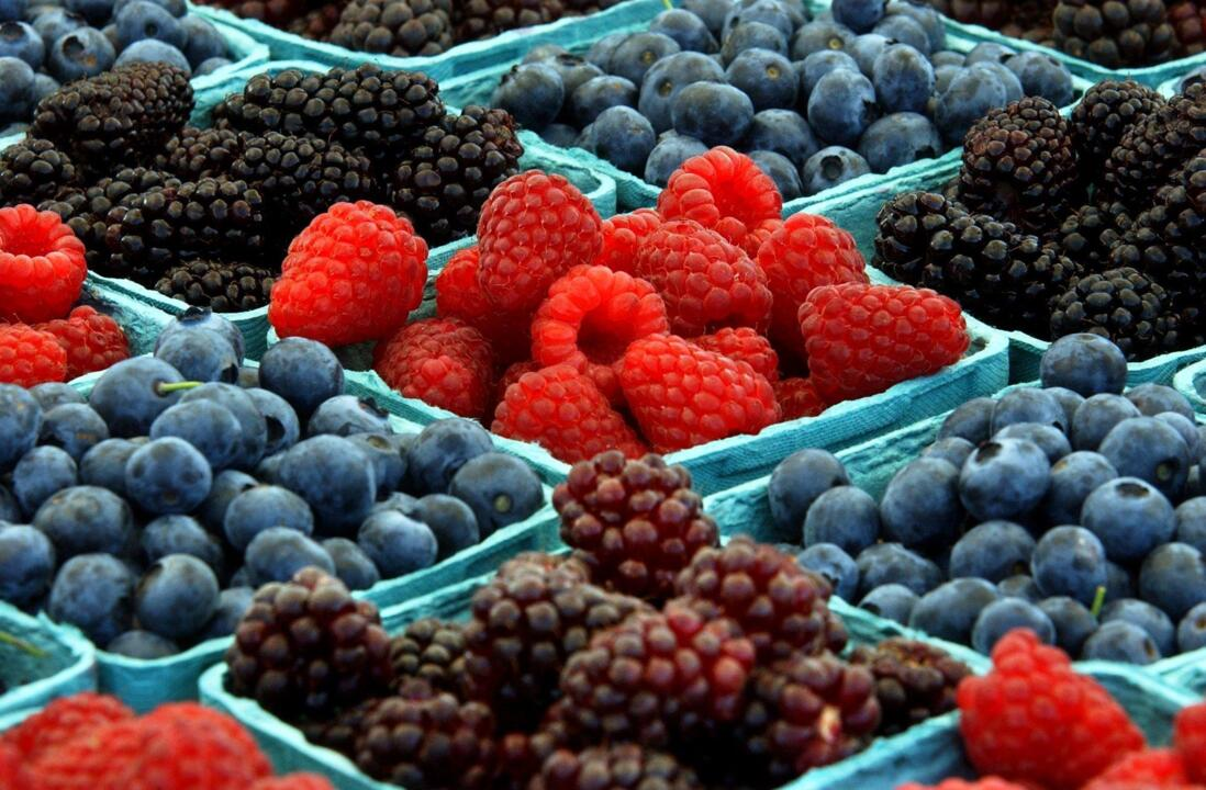 'It is time to support your local farmer' — Whatcom berry season shaping up to be difficult