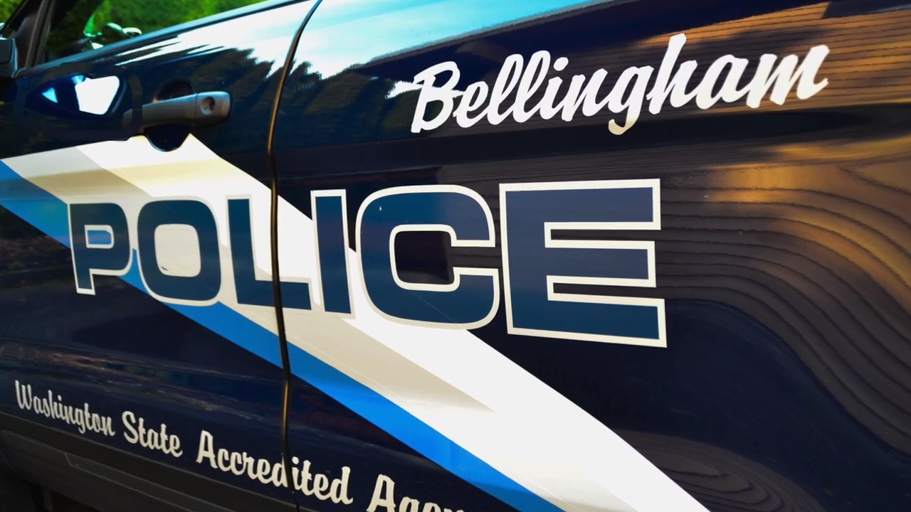Man allegedly broke into a Bellingham auto dealership and began siphoning gas