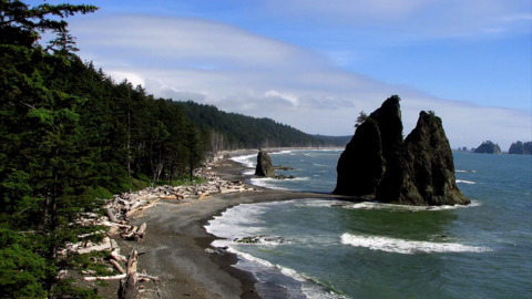 What is there to do at Olympic National Park