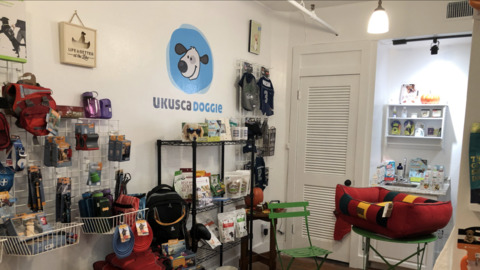 This new pet store wants to be neighborhood hangout for the active dog scene