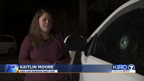 Cars damaged by BB or pellet guns in east Thurston County