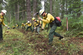 Wildfire Training Academy readies DNR for expected busy season