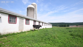 Pennsylvania's dairy farmers are in a 'crisis'
