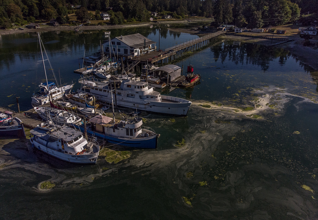 Key Peninsula marina dogged by state and county violations has reopened