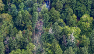 Aerial view of stolen plane crash site on Ketron Island