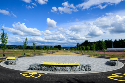 Puyallup's Van Lierop Park is open and could see a spray park, orchard, sport fields
