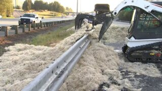 Semi overturns, spills mountain of chicken feathers on I-5