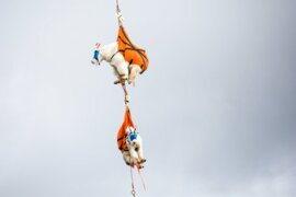 When goats fly: Round 3 of relocating mountain goats from Olympics to Cascades begins
