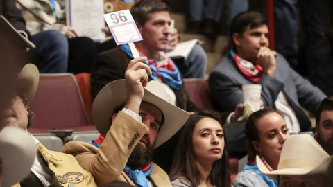 Livestock go for big money at the Fort Worth Stock Show Sale of Champions