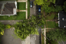 Aerial footage : Trees blocking Park Ave. in Lexington