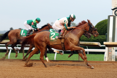 Watch Blue Prize win the Juddmonte Spinster Stakes at Keeneland