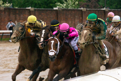 No Preakness for Maximum Security, co-owner says. Kentucky Derby appeal to be filed Monday.