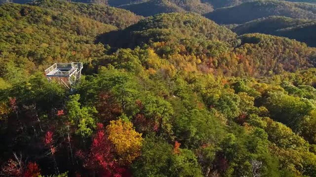 Fall color will be peaking soon. Here's where to find great Kentucky views.