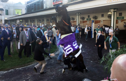 Update on Thousand Words after rearing up in Churchill Downs paddock