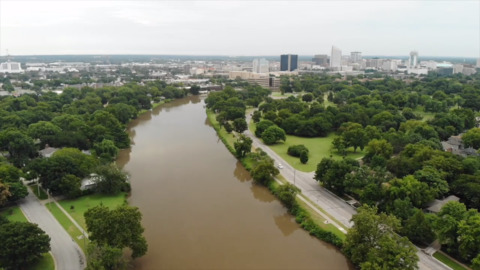 Wichita's tree canopy is declining by 5,000 trees a year, officials say