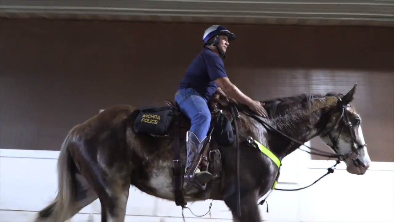 Wichita Police Department shows off its two new police horses