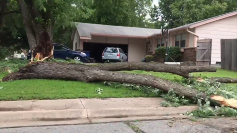 Kansas weather: Wind breaks trees in Derby, damages roof and windows