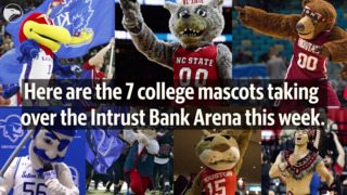 Here are the 7 college mascots taking over the Intrust Bank Arena this week