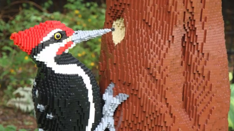 Larger-than-life Lego sculptures fit right in at Botanica's gardens
