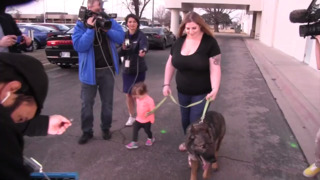 Dog reunited with family after being shipped halfway around the world