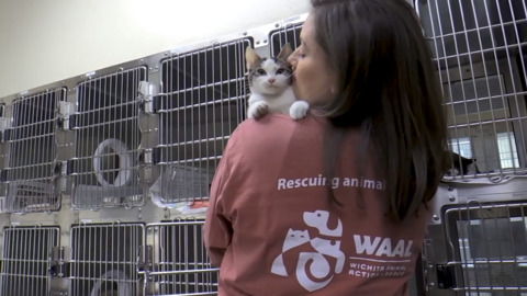 Wichita Animal Action League lives up to its name