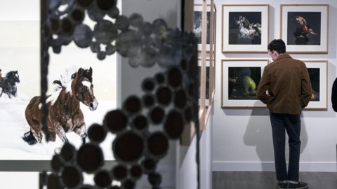 Van Dyck champions local artists, adds a new fine art gallery to Downtown Boise