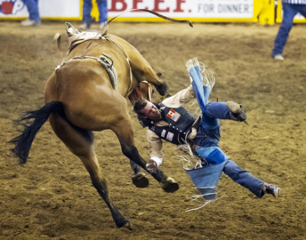 Snake River Stampede: Eight Idaho cowboys contend for record-setting prize money