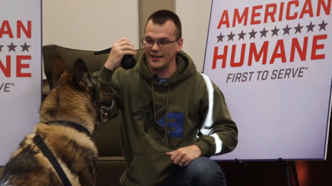 Military dog is reunited with Mountain Home handler