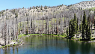Jennie Lake hike has it all: wildflowers, stunning views and fishing